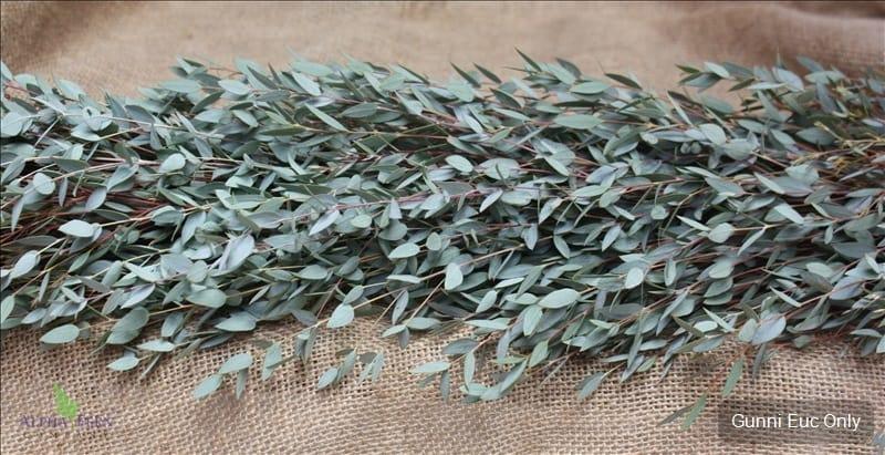 Gunni Eucalyptus Only 995