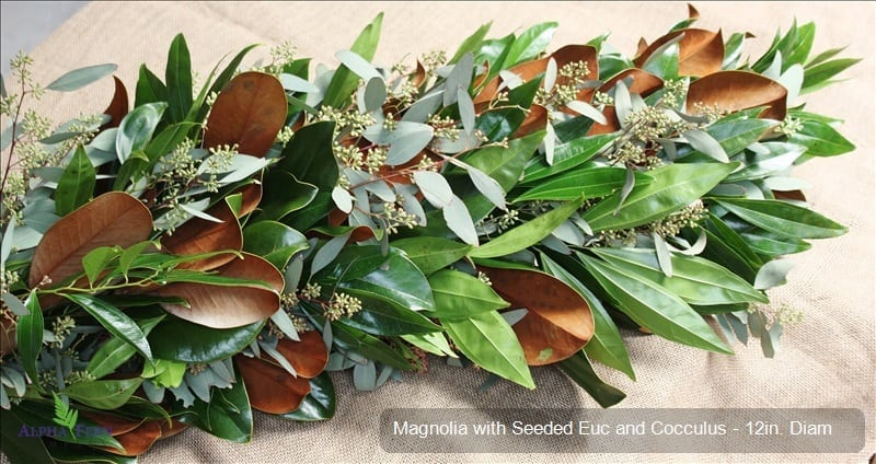 Magnolia With Seeded Eucalyptus And Cocculus Utah Wholesale